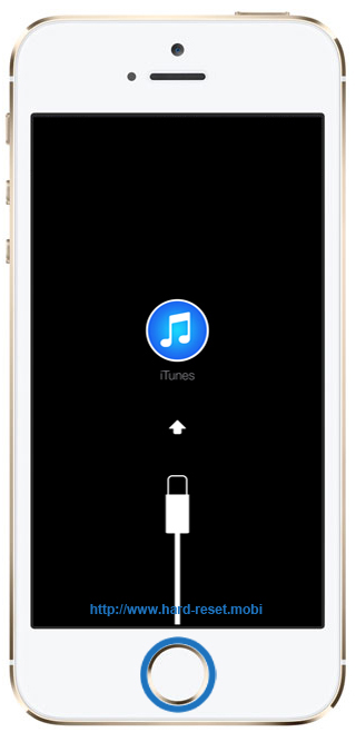 Apple iPhone 5s Recovery Mode