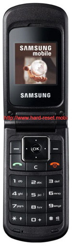 Samsung SGH-B300 Soft Reset